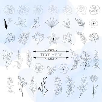 Conjunto de elementos decorativos florales dibujados a mano