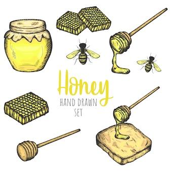 Conjunto de elementos de diseño dibujado a mano miel, vector diseño vintage aislado.