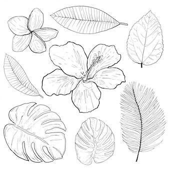 Conjunto de elementos de diseño tópicos y fotomatón. ilustracion vectorial