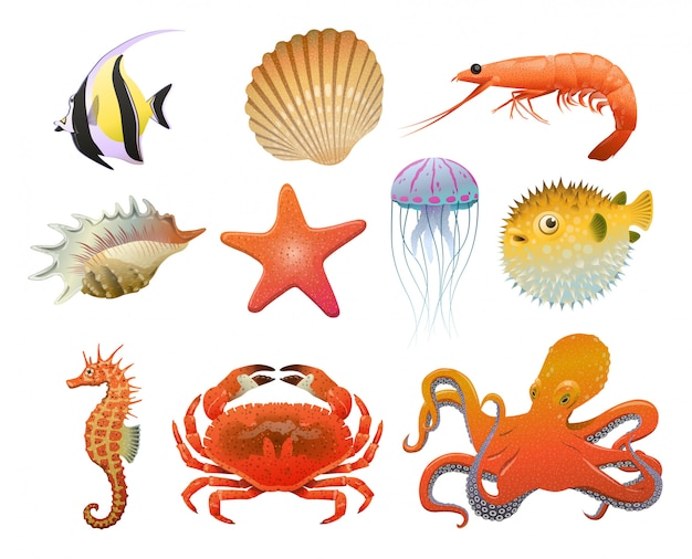 Conjunto de elementos de fauna marina de dibujos animados