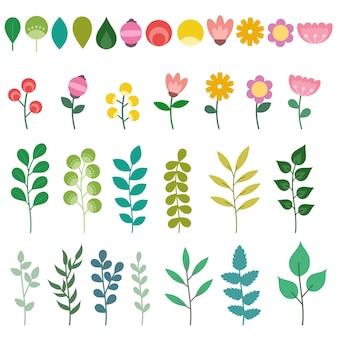 Conjunto de elementos florales aislados