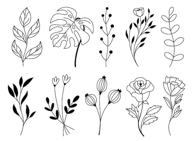 Conjunto de elementos florales dibujados a mano doodle