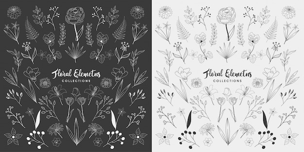 Conjunto de elementos florales dibujados a mano