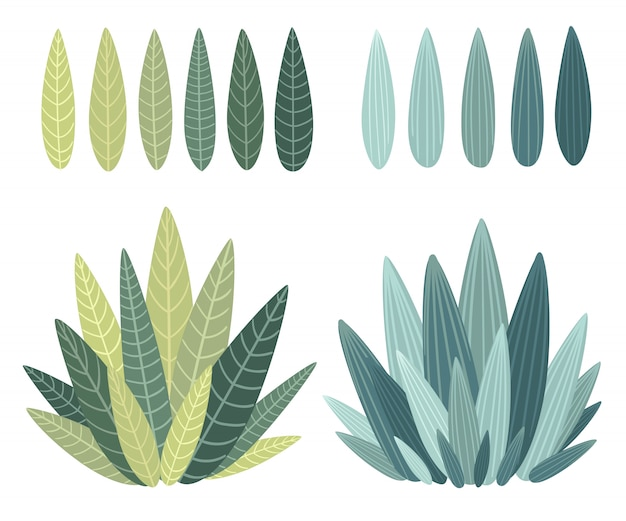 Conjunto con elementos florales y hojas.elementos decorativos para sus hojas, remolinos, ilustración de estilo floral.