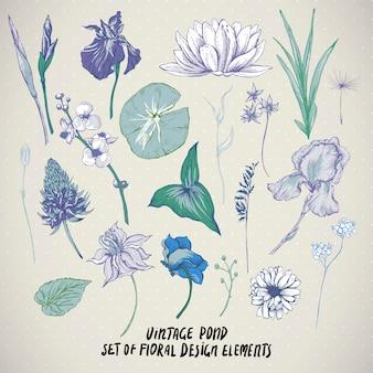 Conjunto de elementos de flores de agua de estanque vintage