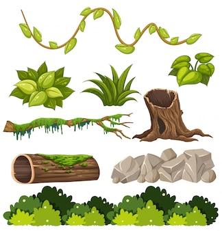 Un conjunto de elementos forestales
