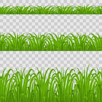 Conjunto de elementos de hierba verde sobre fondo transparente para el diseño