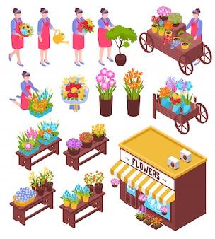 Conjunto de elementos isométricos de floristería