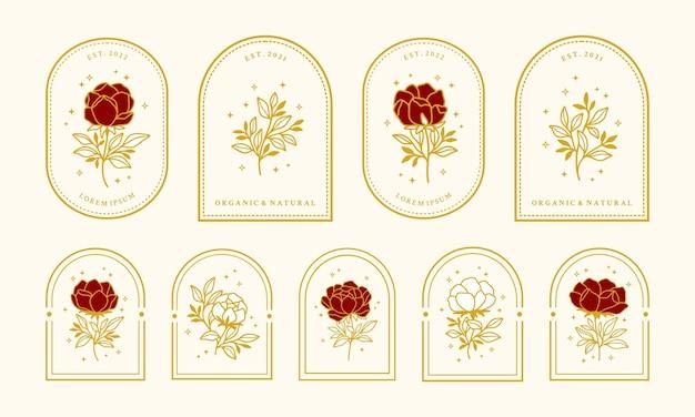 Conjunto de elementos de logotipo de flor de peonía de belleza femenina vintage con marco para mujeres
