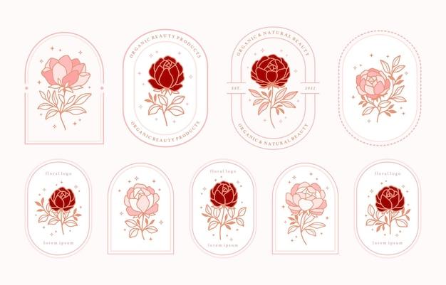 Conjunto de elementos de logotipo de flor rosa de belleza femenina vintage con marco para mujeres