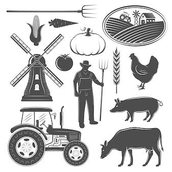 Conjunto de elementos monocromáticos de granja