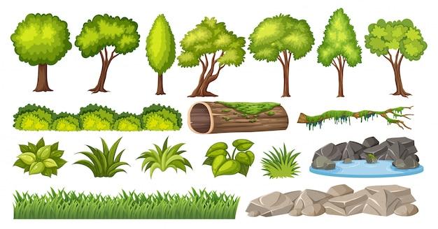 Conjunto de elementos de la naturaleza para la decoración.