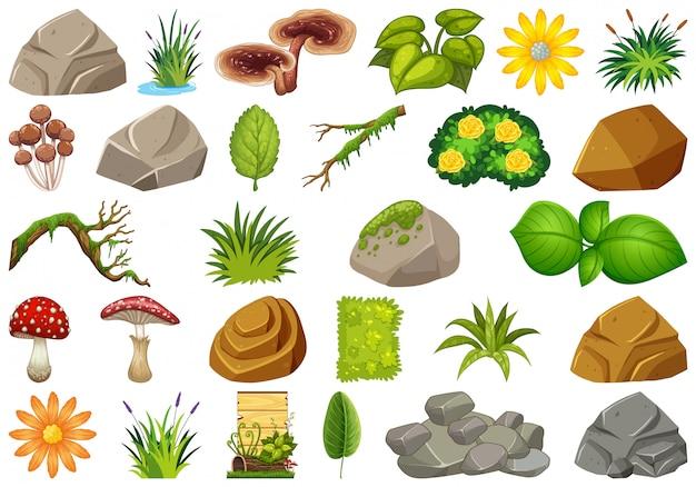 Conjunto de elementos de la naturaleza.
