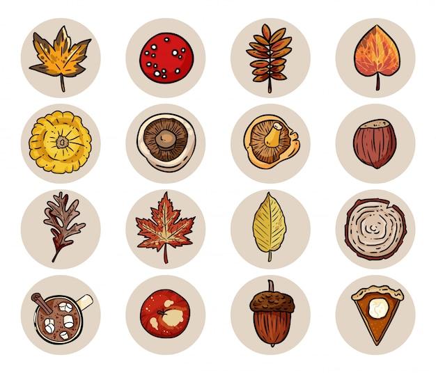 Conjunto de elementos de otoño de dibujos animados lindo