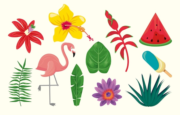 Conjunto de elementos de temporada de verano
