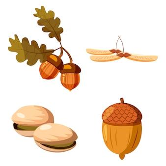 Conjunto de elementos de tuercas. conjunto de dibujos animados de nueces