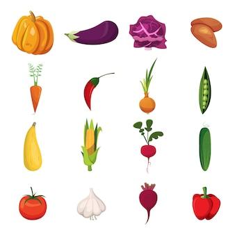 Conjunto de elementos de verduras