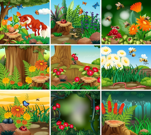 Conjunto de escena de fondo con tema de naturaleza