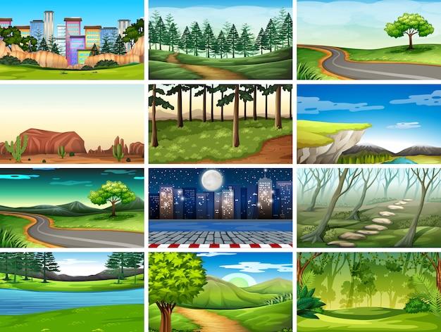 Conjunto de escenas en la naturaleza.