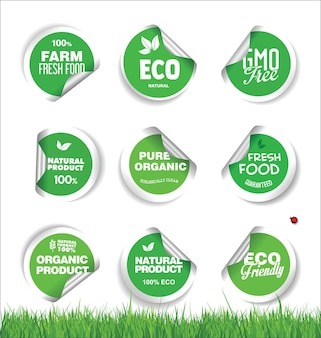 Conjunto de etiquetas de alimentos orgánicos frescos naturales y sabrosos