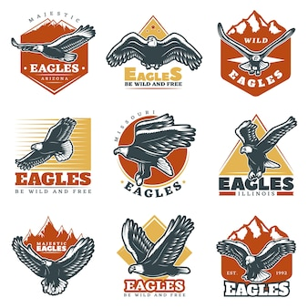 Conjunto de etiquetas de color vintage hermosas águilas