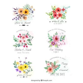Conjunto de etiquetas con flores en acuarela