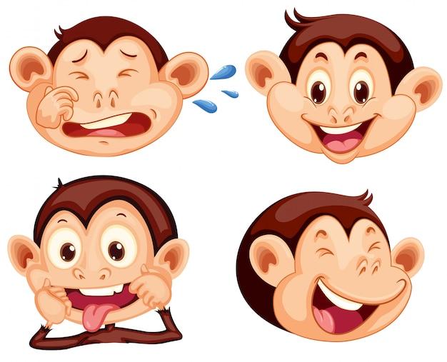 Conjunto de expresión facial de mono.