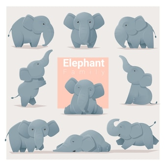Conjunto de familia de elefantes