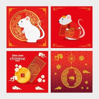 Conjunto de feliz año nuevo chino con decoración