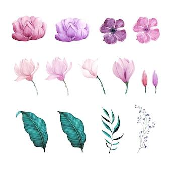 Conjunto de flor flor y hoja acuarela pintada