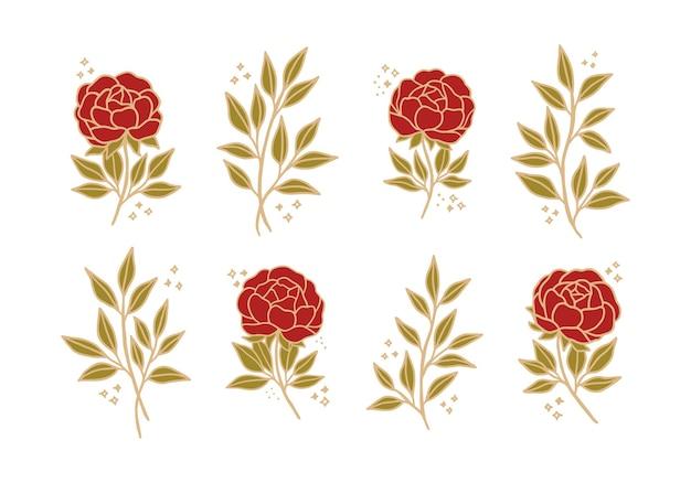 Conjunto de flor de peonía botánica vintage y elemento de rama de hoja