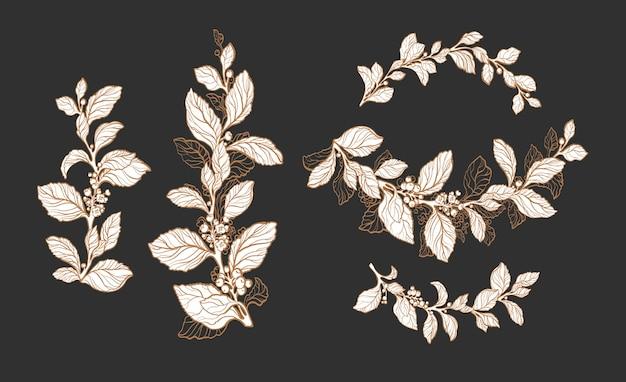 Conjunto floral de plantas de té de yerba ramo aromático de diseño de hierbas