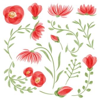 Conjunto floral vector de acuarela