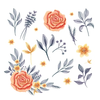 Conjunto de flores aisladas hojas acuarela floral
