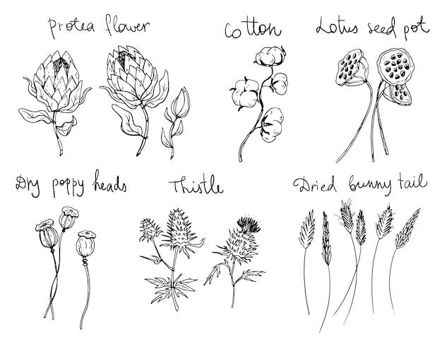 Conjunto de flores de arte de línea decorativa, ilustración vectorial
