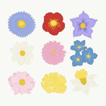 Conjunto de flores bonitas de diseño plano
