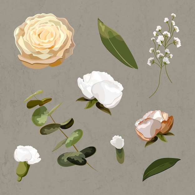 Conjunto de flores florecientes