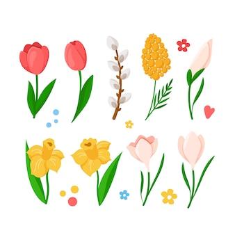 Conjunto de flores de primavera de dibujos animados - tulipanes, narcisos, narcisos, mimosa, campanilla de invierno, rama de sauce,