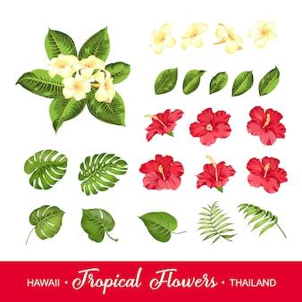 Conjunto de flores tropicales.