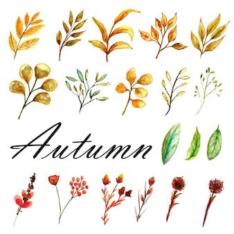 Conjunto de fondo de acuarela otoñal de hojas amarillas marrones y plantas silvestres