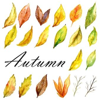 Conjunto de fondo acuarela otoño de hojas amarillas marrones