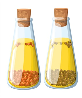 Conjunto de frascos de aceite especiado de varios sabores ají rojo caliente eneldo clavo de romero pimienta negra pimiento rojo y aceitunas. ilustración