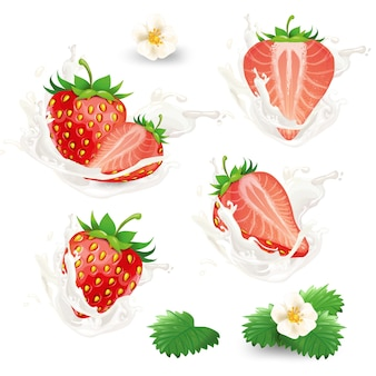 Conjunto de fresas enteras y medias con flores, hojas y crema, leche o salpicaduras de yogur.