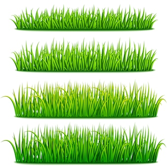Conjunto de fronteras de hierba verde fresca