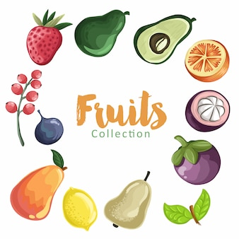 Conjunto de fruta colorida de dibujos animados. colección de frutas