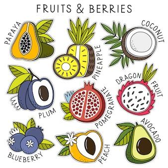 Conjunto de frutas y bayas