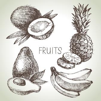 Conjunto de frutas boceto dibujado a mano. alimentos ecológicos. ilustración