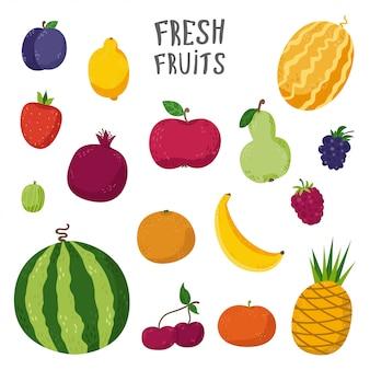 Conjunto de frutas en estilo de dibujos animados