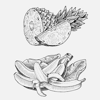 Conjunto de frutas frescas dibujadas a mano, grabadas, comida vegetariana, plantas, plátanos de aspecto vintage y piña.