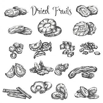Conjunto de frutas secas dibujado a mano